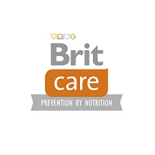 britcare-logo