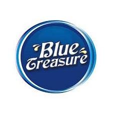 bluetreasure-logo