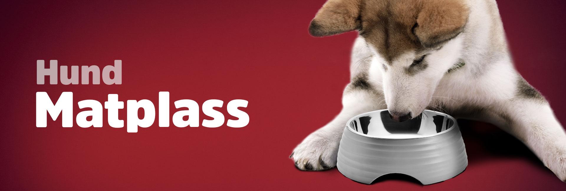Hundeskåler og vanflasker