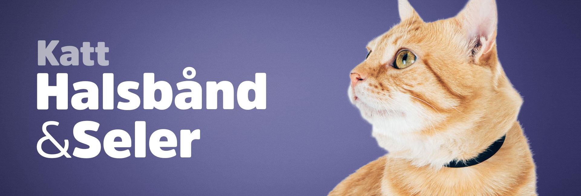 Kattehalsbånd & seler