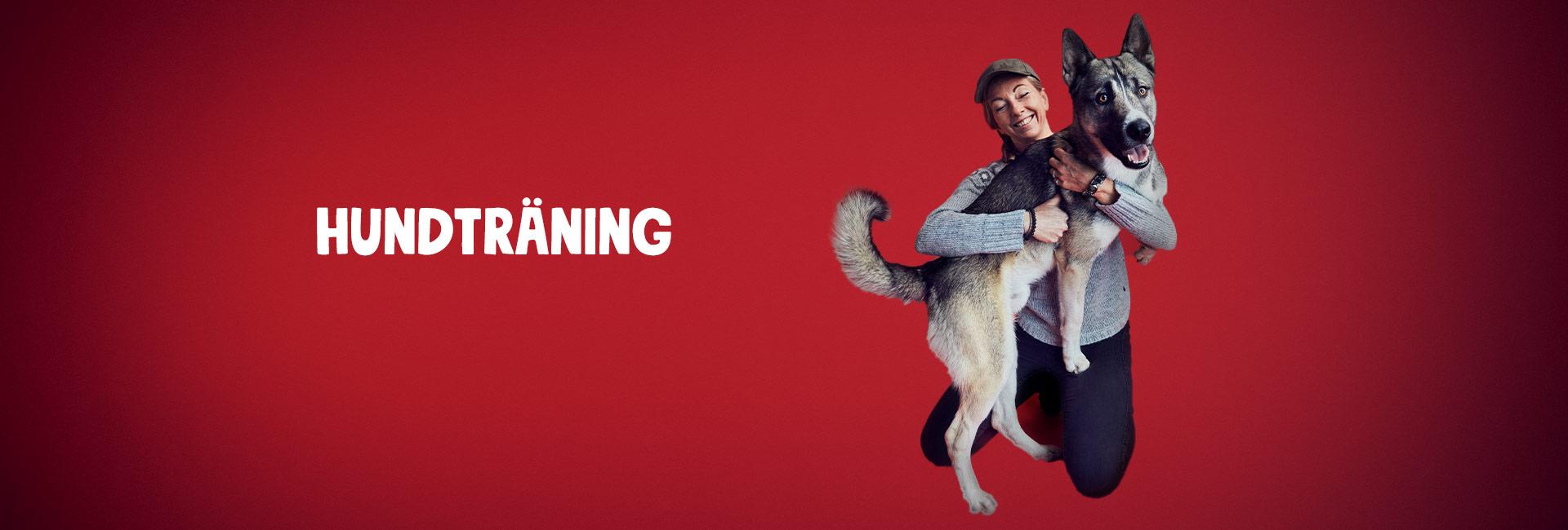 Hundträning