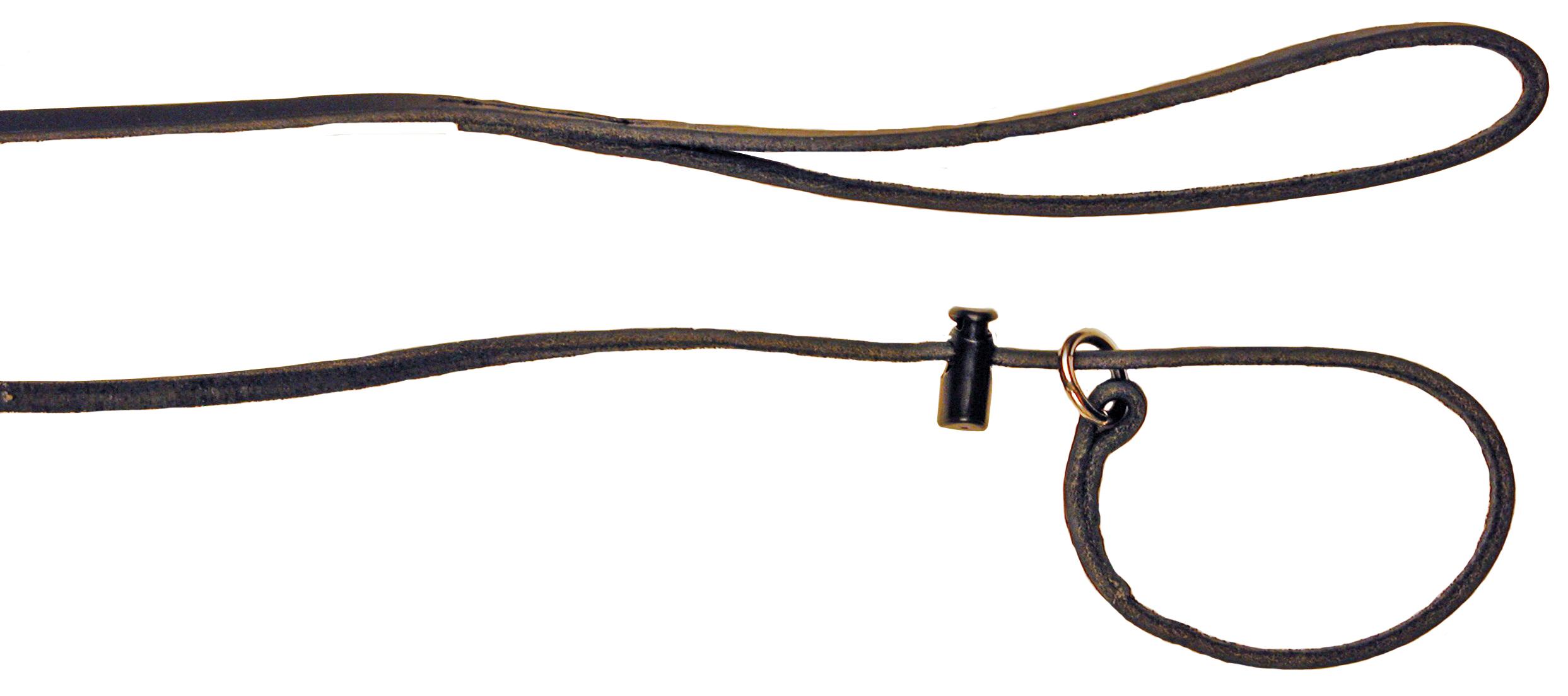 Alac Utställningskoppel läder 160cm