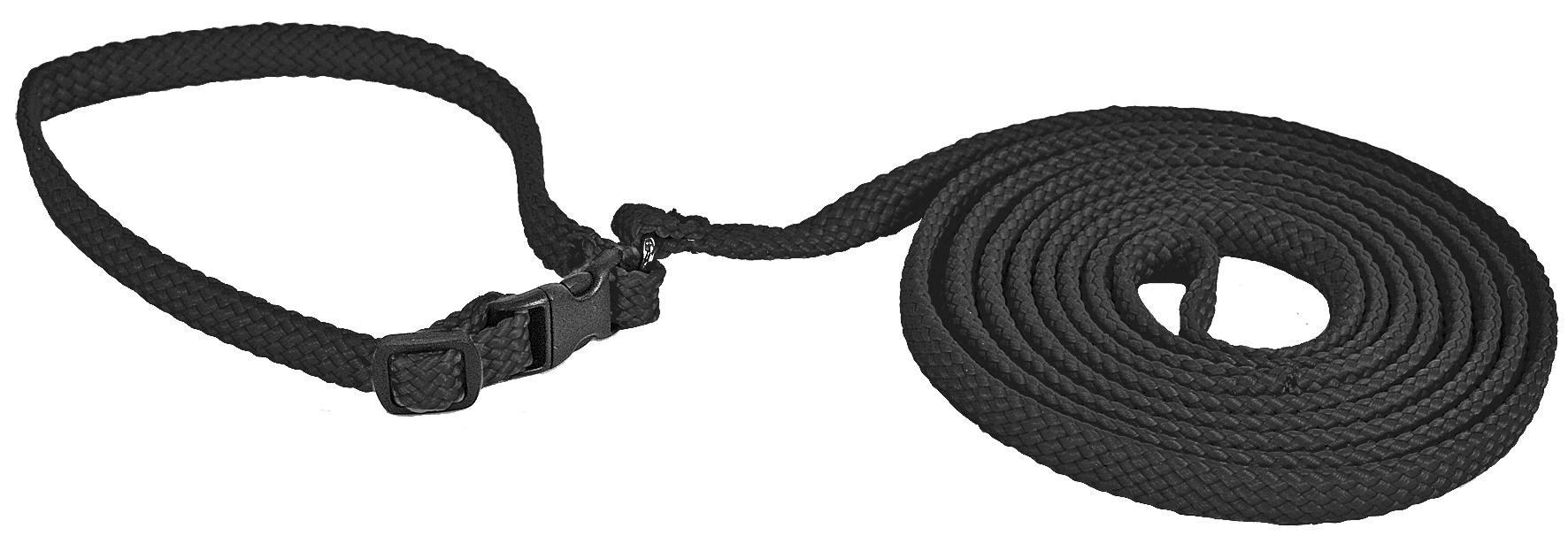 Alac Halsband+Koppel S 170cm