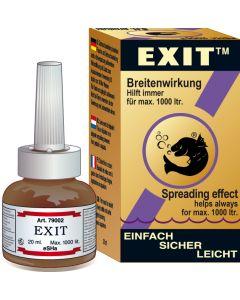 Seahorse Exit