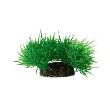 Aquael Dekorväxt Grønn XS 7cm