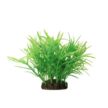 Aquael Dekorväxt Grønn S 10cm