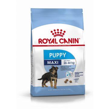 Royal Canin Maxi Puppy 10kg