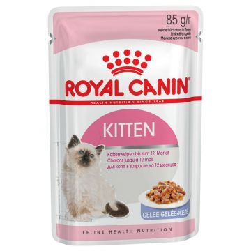 Royal Canin Kitten Jelly Wet 12x85g