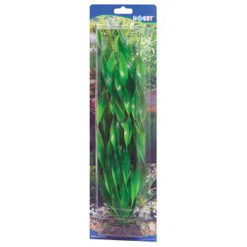 Hobby Vallisneria Grønn 20cm