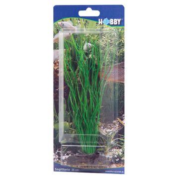 Hobby Sagittaria Grønn 20cm