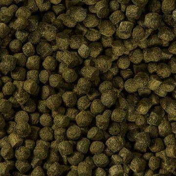 Sera Koi Color Nature pellets M 1000ml