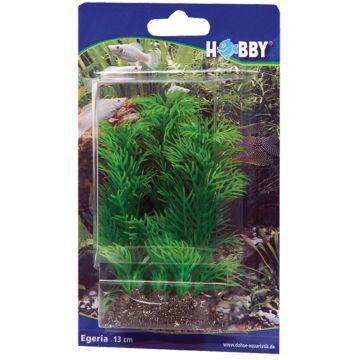 Hobby Egeria Grønn 13cm