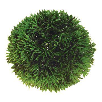 Hobby Plant Ball Grønn 9cm
