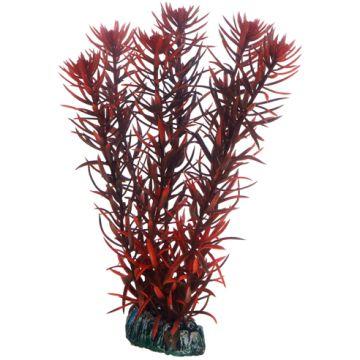 Hobby Eusteralis 20cm Rød 20cm