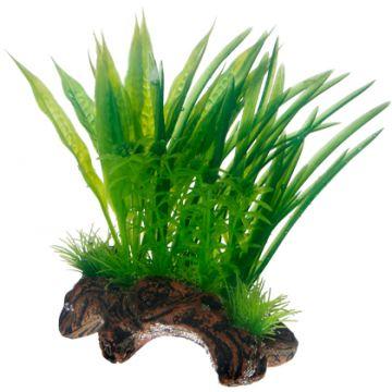 Hobby Flora Root 1 S 17cm Grønn S 17cm