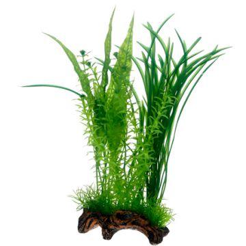 Hobby Flora Root 1 L 30cm Grønn L 30cm