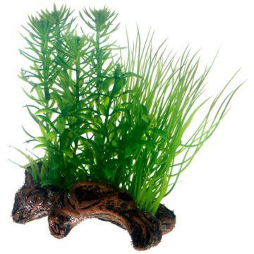 Hobby Flora Root 2 S 17cm Grønn S 17cm