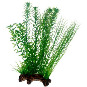 Hobby Flora Root 2 L 30cm Grønn L 30cm