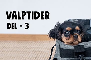 Valptider Del 3