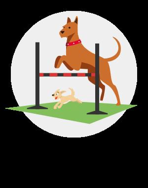 Härlig aktiveringsyta för hunden!