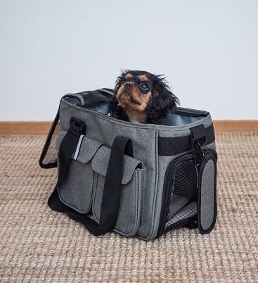 Valpen Frans i sin bärväska Ludde
