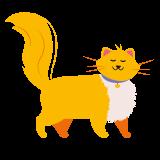 Dogmans kattsortiment