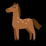 Dogman utbud häst och stall